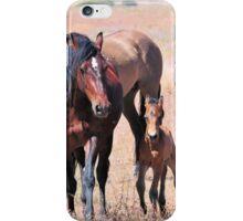 Newborn Foal's First Steps iPhone Case/Skin