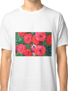 Red roses in the garden. Classic T-Shirt