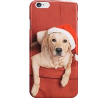 Dog with Christmas hat on armchair iPhone Case/Skin