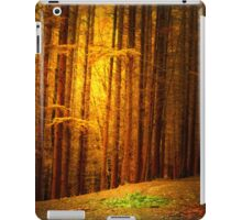 TAKE A MOMENT LIKE THIS  iPad Case/Skin