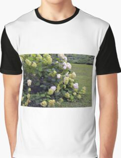 Bush of white flowers in the garden. Graphic T-Shirt