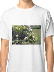 Bush of white flowers in the garden. Classic T-Shirt