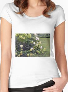 Bush of white flowers in the garden. Women's Fitted Scoop T-Shirt