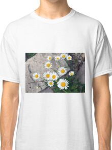 Beautiful small white flowers on the pavement. Classic T-Shirt