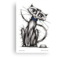 Silly cat Canvas Print