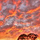 Autumnal sunrise by Michael Matthews