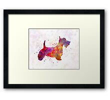 Scottish Terrier in watercolor Framed Print