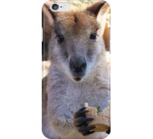 Hungry Hungry Wallaby - Featherdale Wildlife Park iPhone Case/Skin