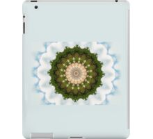 Green Kaleidoscope/Medallion Print iPad Case/Skin
