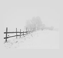 Snow Covered Landscape by emilysmithart