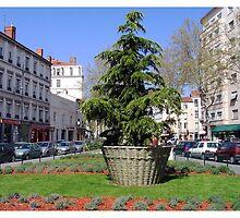 Lyon, France by Sama-creations