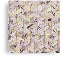 Vintage hexagonal marble Canvas Print