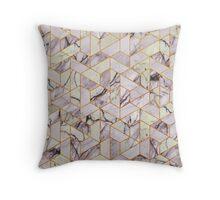 Vintage hexagonal marble Throw Pillow