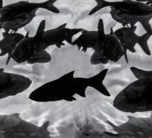Underwater panorama Sticker