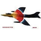 Rainbow Hawk by Akkra