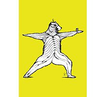 Yogi bear pose - Warrior 2  Photographic Print