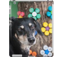 Dog and Color iPad Case/Skin