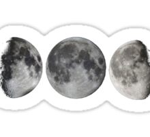 LUNAR PHASES Sticker