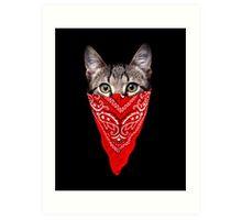 Gangster Cat Art Print