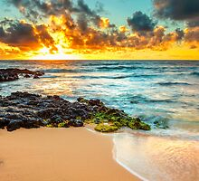 Sandy Beach Sunrise 7 by Leigh Anne Meeks