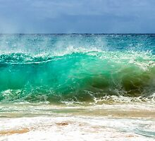 Sandy Beach Shorebreak by Leigh Anne Meeks