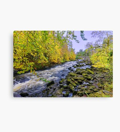 River Dochart in Autumn Canvas Print