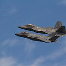 F22 And F35  by yampy