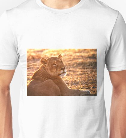 The Morning Glow Before The Hunt T-Shirt