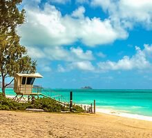 Waimanalo Lifeguard Stand 1 by Leigh Anne Meeks