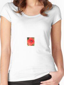 Poppy flower Women's Fitted Scoop T-Shirt