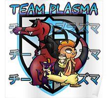 Plasma Team Poster