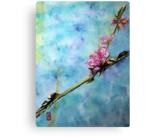 Peach blossom Canvas Print