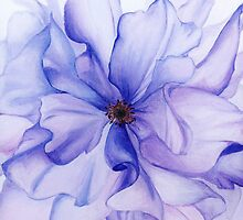 Translucent Blossom (1 of 3) by Jayne Whitaker