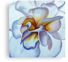 Translucent Blossom (2 of 3) Canvas Print