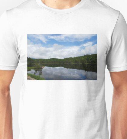 Calm Lake, Turbulent Sky Unisex T-Shirt