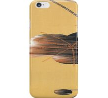 Distortion of Wind iPhone Case/Skin