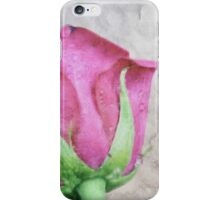 A painting of pink Rose . iPhone Case/Skin