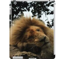 The lion sleeps iPad Case/Skin