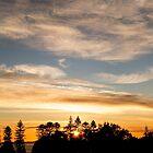 East Coast Sunrise (pano) by rom01