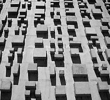 Brasilia Blocks by donjoy