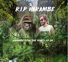 RIP HARAMBE by Tortoise