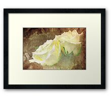 A painting of a two white of Roses Framed Print