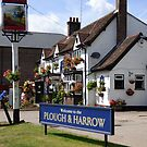 The Plough and Harrow in full flower by nealbarnett