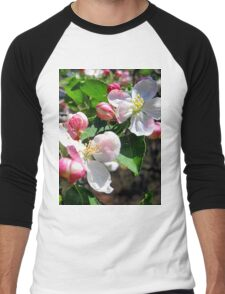 sweetness of spring Men's Baseball ¾ T-Shirt