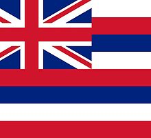 Hawaii State Flag by Carolina Swagger