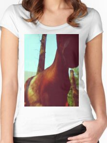 Horse at the Zoo Women's Fitted Scoop T-Shirt