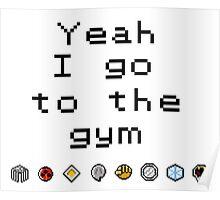 Pokemon gym- Johto Poster