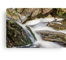 Ronny Creek, Cradle Mountain, Tasmania, Australia Canvas Print