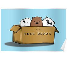 We Bare Bears - Bears in a Box Poster