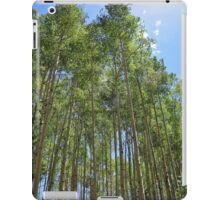 Green Aspens iPad Case/Skin